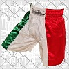 FIGHTERS - Pantaloncini Muay Thai / Italia / Tri Colore