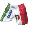FIGHT-FIT - Muay Thai Shorts / Italien / Stemma / Small