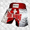 FIGHTERS - Muay Thai Shorts / Schweiz / XL